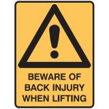 Warning Signs - Beware Of Back Injury When Lifting